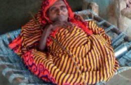 Shanti Devi (File Picture)